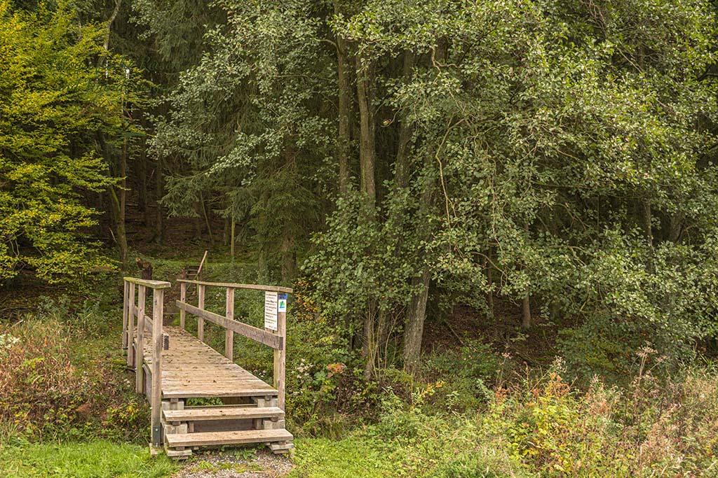 Brücke an der Alten Eiche