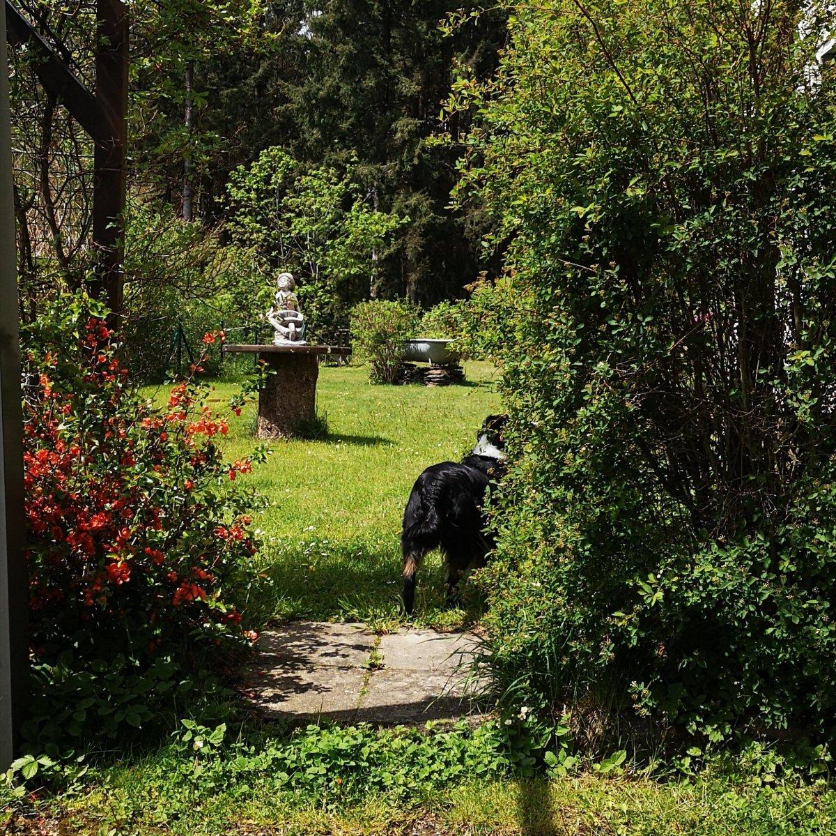 Garten - Haus am Raßberg