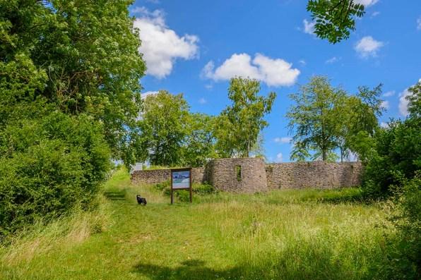 Burgruine Dollendorf