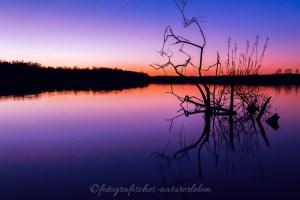 Sonnenuntergang Unterbachersee mit Spiegelung