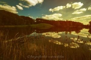 Wolkenspiel an meinem Waldsee Idyll