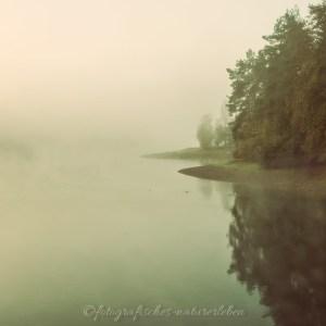 Bevertalsperre im Nebel