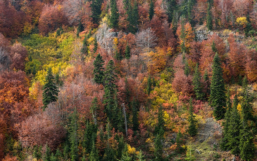Doğa ve Manzara Fotoğrafçılığı – 10 Nisan 2018