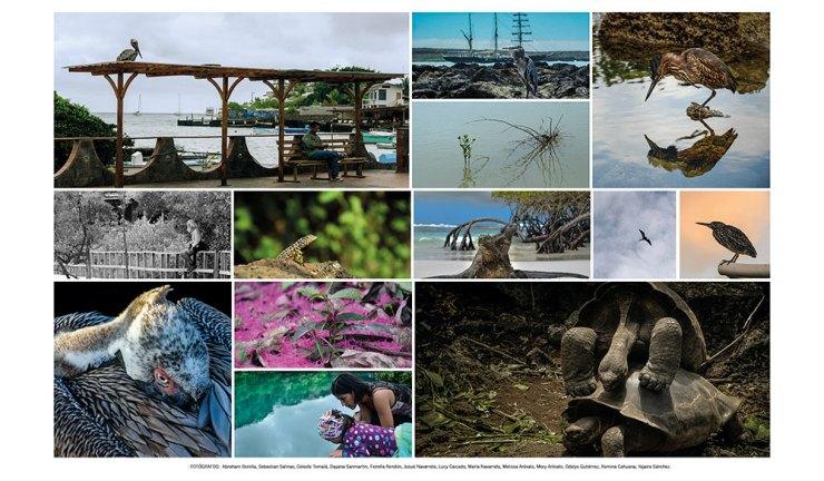 fotografo en galapagos