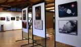 Exposición Aula Naturaleza - II Encuentro Fotográfico Aragón