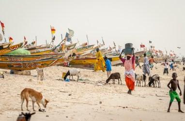 Senegal-Afryka-Trybalski_6276