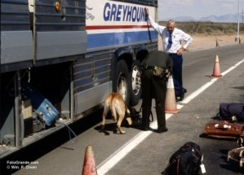 Bordre Patrol K-9 Rudy sniffing out meds on I-10. © William P. Diven.
