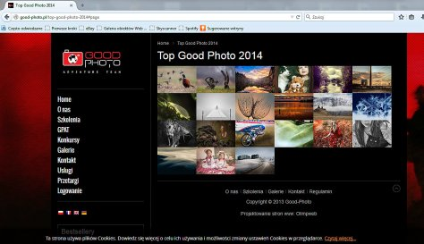 http://good-photo.pl/top-good-photo-2014#page