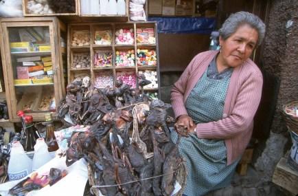 Bolivia, La paz, mercado de las brujas, retrato