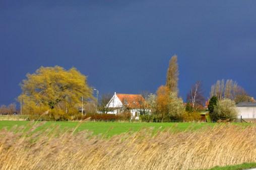 Flandes, Oudekapelle, campo