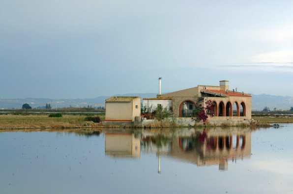 Mantisa, Delta del Ebro