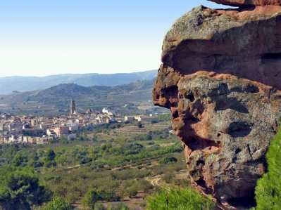 Priorat, Falsat
