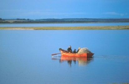 Uruguay, Maldonado, Laguna José Ignacio, pescador