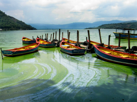 Lake Amatitlán