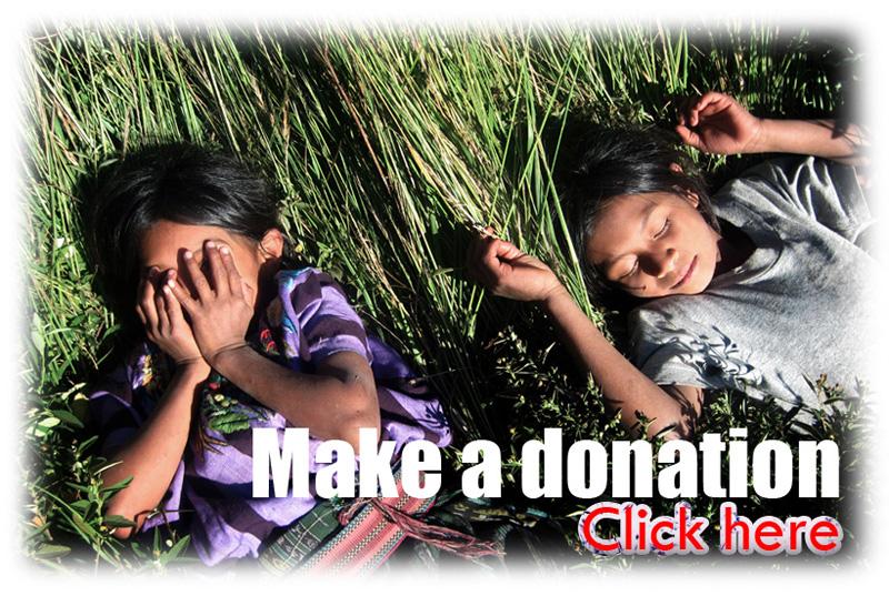 donationbotonfb