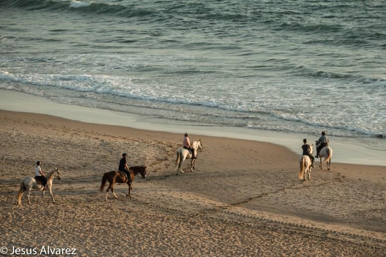 A caballo por la playa de la Barrosa