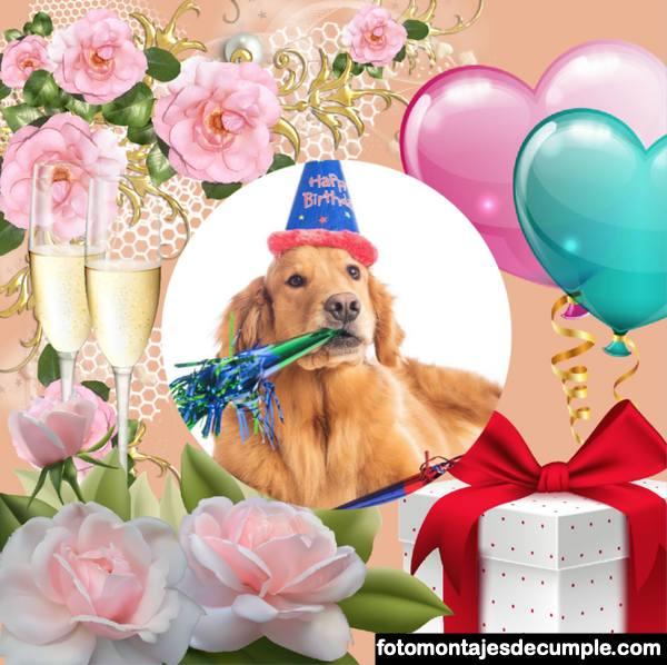 Fotomontajes de cumpleaños hermosos