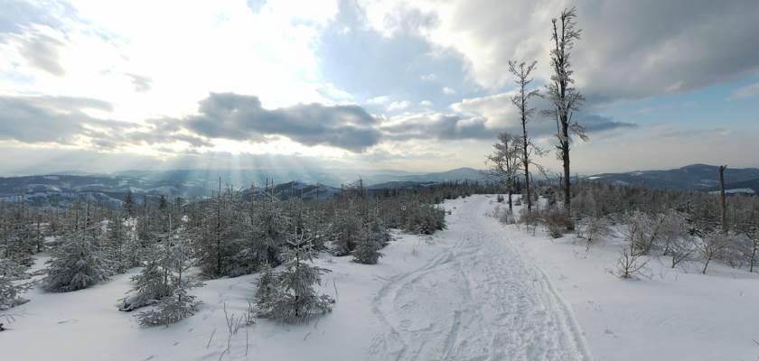 Zimowy pejzaż w okolicach Przełęczy Salmopolskiej