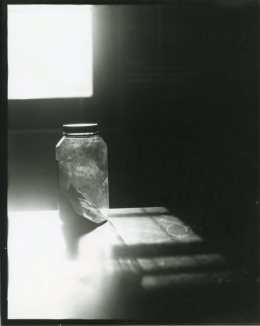 Contact print from paper negative