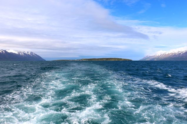 Wyspa Hrisey