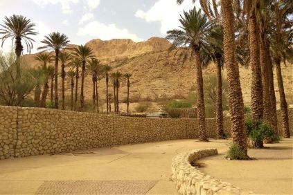 Rezerwat Ein Gedi - wejście