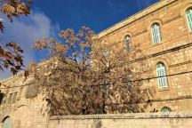 Klasztor Świętej Anny