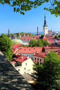 panorama Tallina z Górnego Miasta