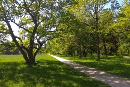 Free-form Park