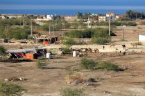okolica Thara Dead Sea Resort
