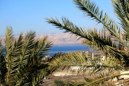 okolica hotelu Thara Dead Sea Resort
