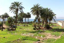 Akaba - okolice mariny