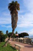 Mesyna - Park Passeggiata a Mare