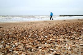 Ostenda - plaża