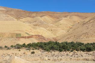 Droga z Wadi Musa do Al Karak