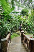 Forsgate Conservatory