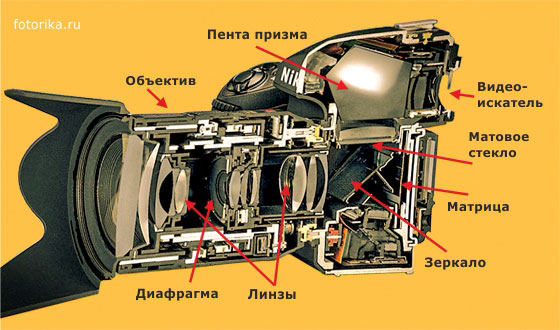 slr camera cutaway