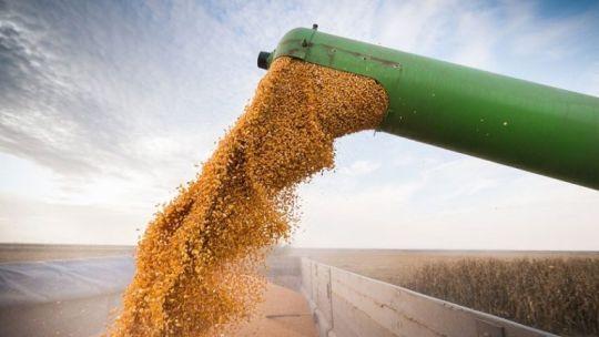 Exportaciones de granos.