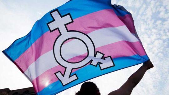 Día de la Visibilidad Travesti Trans 20210331