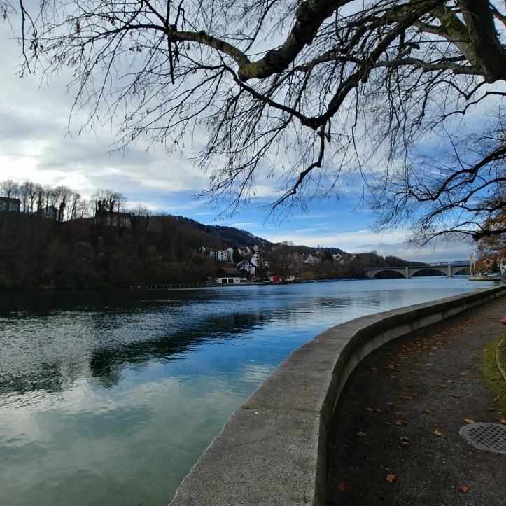 White clouds and blue sky reflecting in the Rhine river