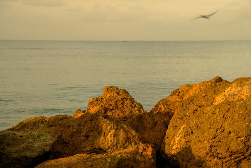 Rocas amarillas a la orilla delmar