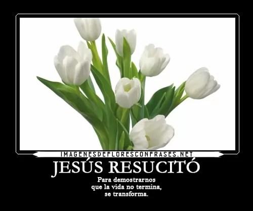 Tarjetas De Condolencias Cristianas Fallecimiento Por