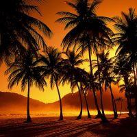 Underbara bilder från resor till Trinidad & Tobago