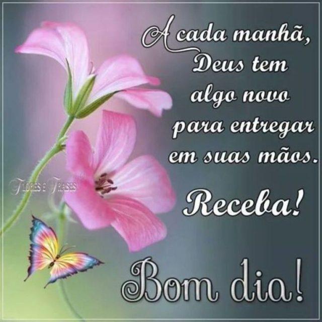 Bom dia! amigos tenha um dia abençoado por Deus e muito feliz.