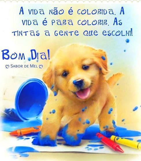 Bom dia, a vida é para colorir...
