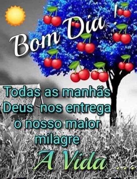 Bom dia, o nosso maior milagre é a vida