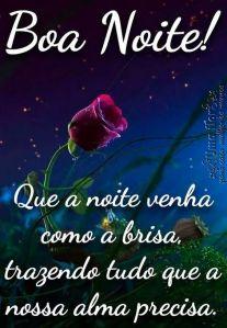 Boa noite, que seja de bênçãos e paz para todos