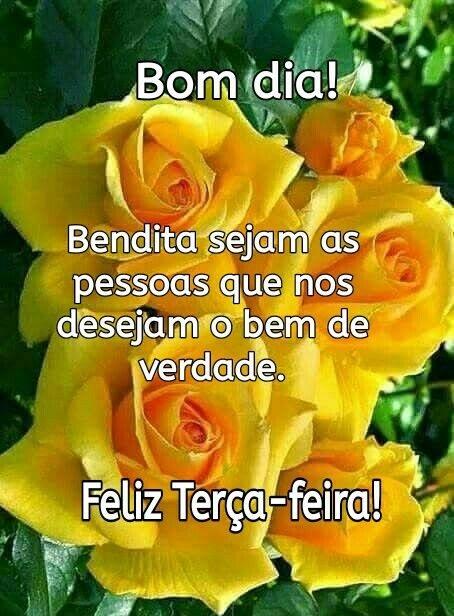 Bom dia e feliz terça com rosas amarelas