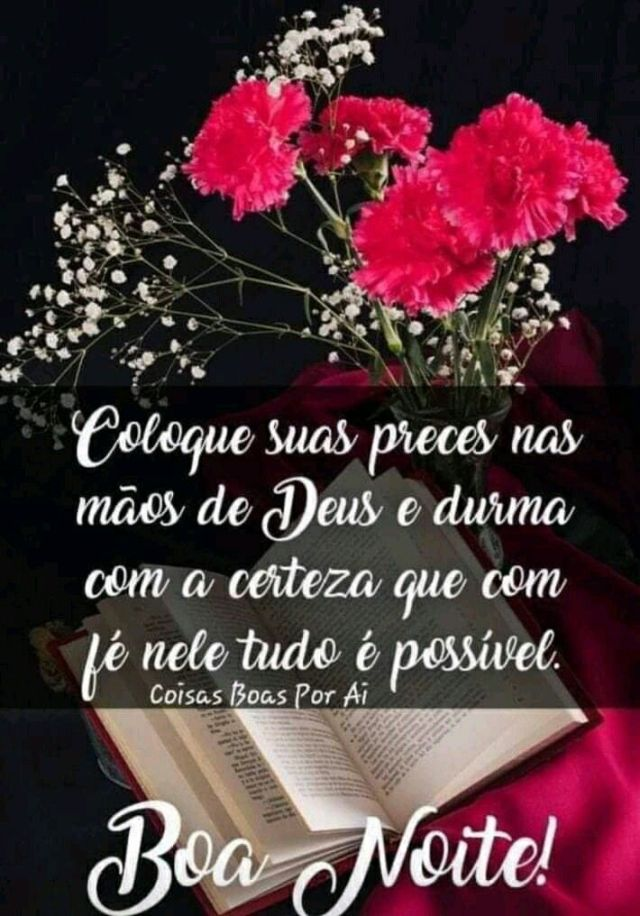 Boa noite com flores e mensagem