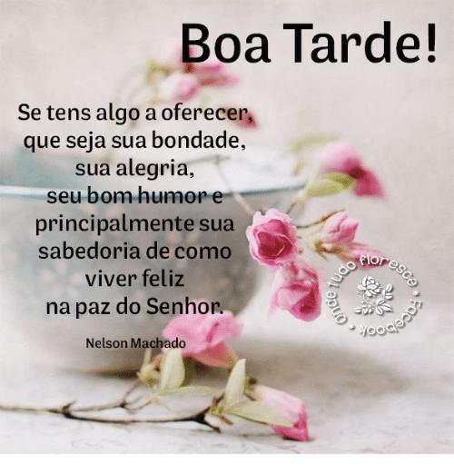 Boa tarde na paz de Deus