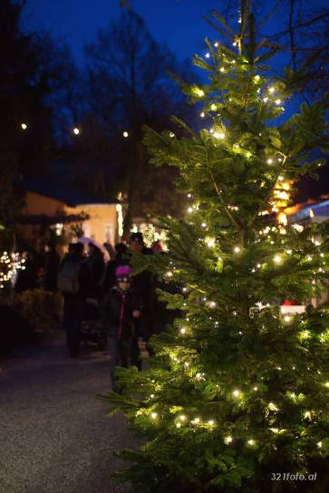 Fotosturm am Advent in der Kellergasse 2014